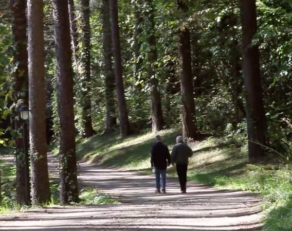 two man walking down wooded road