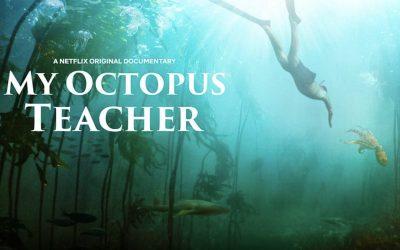 "Reel Spirit Movie Project – ""My Octopus Teacher"" Oct 21"